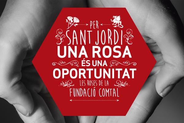 rosas-solidarias-sant-jordi-exclusion-social